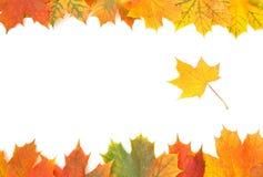 Bordo di autunno Fotografie Stock