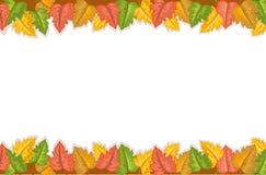 Bordo di autunno con i fogli dorati Fotografia Stock