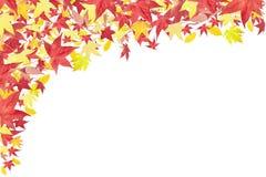 Bordo di caduta dei fogli di autunno Immagini Stock Libere da Diritti