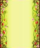 Bordo di fioritura di estate Fotografia Stock