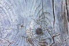 Bordo di legno anziano e stagionato Fotografia Stock