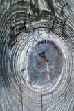 Bordo di legno anziano nella macro Fotografie Stock