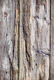 Bordo di legno anziano nella macro Fotografia Stock