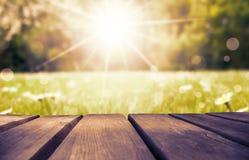 Bordo di legno con Daisy Flower Field As Background, Ruby Retro Filter Fotografie Stock