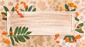 Bordo di legno con le decorazioni di autunno Fotografia Stock Libera da Diritti