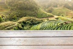 Bordo di legno davanti ai campi vaghi Immagini Stock Libere da Diritti