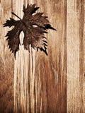 Bordo di legno del foglio di autunno fotografia stock