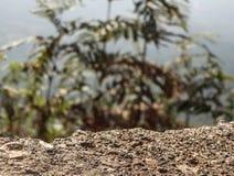 Bordo di una montagna Immagini Stock