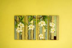 Bordo di verniciatura del fiore sulla parete Fotografia Stock Libera da Diritti
