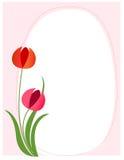 Bordo floreale - colore rosa Immagini Stock Libere da Diritti