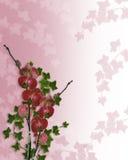 Bordo floreale delle orchidee su raso   Fotografia Stock Libera da Diritti