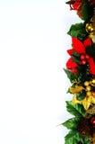 Bordo floreale di Natale. fotografia stock libera da diritti