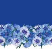 Bordo floreale senza giunte con il fiore blu Immagine Stock Libera da Diritti