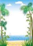 Bordo tropicale illustrazione di stock
