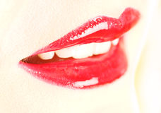 Bordos vermelhos Fotografia de Stock