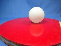 Bordtennisboll och slagträ Arkivfoto