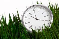 Borduhr und grünes Gras Stockfotos