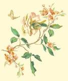 Borduurwerk bloemenpatroon met pioen en swallowtail Royalty-vrije Stock Foto