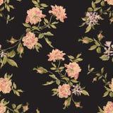 Borduurwerk naadloos bloemenpatroon met pioenenbloesem Stock Foto's