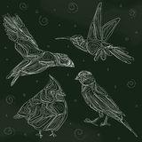 Bordvogels royalty-vrije illustratie