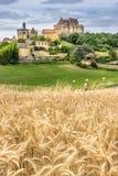 Bore dans le Dordogne images stock