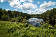 Boreal Forest Wilderness. A wide angle landscape of a peaceful lake surrounded by pine trees and shrubs at La Mauricie National Park,Canada.The blue sky and Stock Images