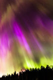 Flux 7 de couleur Photos libres de droits