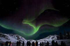Borealis van de dageraad in IJsland stock foto's