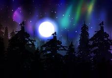 Borealis variopinti dell'aurora Fotografie Stock Libere da Diritti