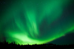 Borealny lasowy tajg Północnych świateł substorm zawijas Zdjęcie Stock