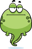Bored Cartoon Tadpole Stock Images
