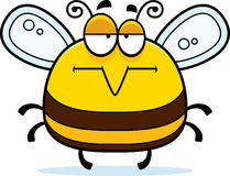 Bored Little Bee Royalty Free Stock Image