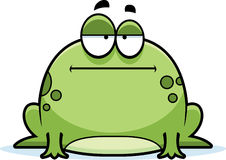 Bored Little Frog Stock Images