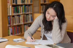 Bored student in a library learning Royalty Free Stock Photo