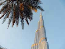 Borg khalifa. The tallest building in the world in royalty free stock image