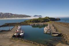 Borgarfjarðarhöfn - Papegaaiduiker het bekijken gebied Stock Foto's