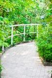 Borggård för formell trädgård Arkivfoto