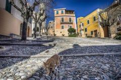 Borgio Verezzi, Savona, Itália, riviera ligurian, cidade center Imagem de Stock