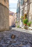 Borgio Verezzi, Savona, Itália, riviera ligurian, cidade center, Fotografia de Stock