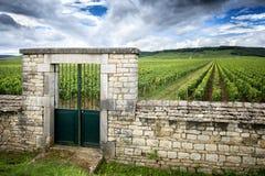 Borgoña, ` de Cote d o Viñedo con la pared de piedra de la cerca y la puerta de acceso imagen de archivo