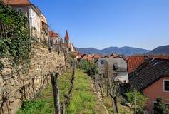 Borgo di WeissŸenkirchen nel der Wachau con le vigne a terrazze nella priorità alta r Fotografia Stock