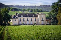 Borgogna, Montrachet Chateau de Meursault ` Di Cote d o france immagini stock libere da diritti
