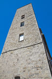 Borgognone tower. Viterbo. Lazio. Italy. Stock Photo