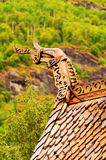 Borgund church roof. A dragon shaped architectural element on a roof top at Borgund church in Norway Stock Photography