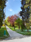 Borik park in Zilina, Slovakia Royalty Free Stock Photos