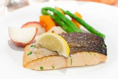 Boring and dry baked salmon with sliced of lemon stock photography