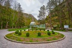 Borjomi Mineral Water Streams Royalty Free Stock Photography