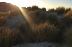 Borkum. Holiday travel shot on West Frisian Island Borkum Stock Photos