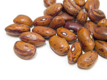 Borlotti beans. Royalty Free Stock Image