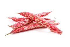 Borlotti beans Royalty Free Stock Photos